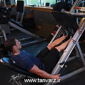 حرکت ساق پا با دستگاه پرس (Leg press calf raise)