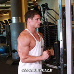 حرکت پشت بازو سیمکش ایستاده Triceps Pushdown - Rope Attachment