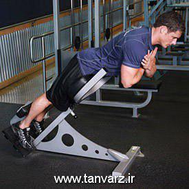 حرکت فیله کمر Weighted Back Extension برای افزایش استقامت