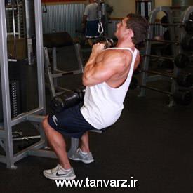حرکت زیر بغل سیمکش با میله وی (V-bar lat pull downs)
