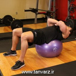 حرکت کرانچ روی توپ - Exercise Ball Crunch