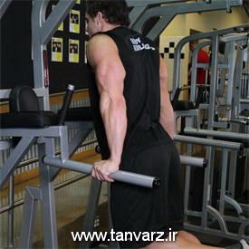حرکت پشت بازو دیپ Dips - Triceps Version
