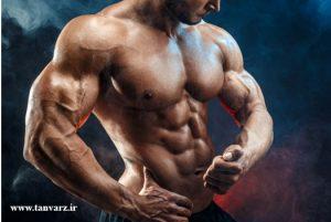 برنامه فشرده عضلات شکم و پهلو