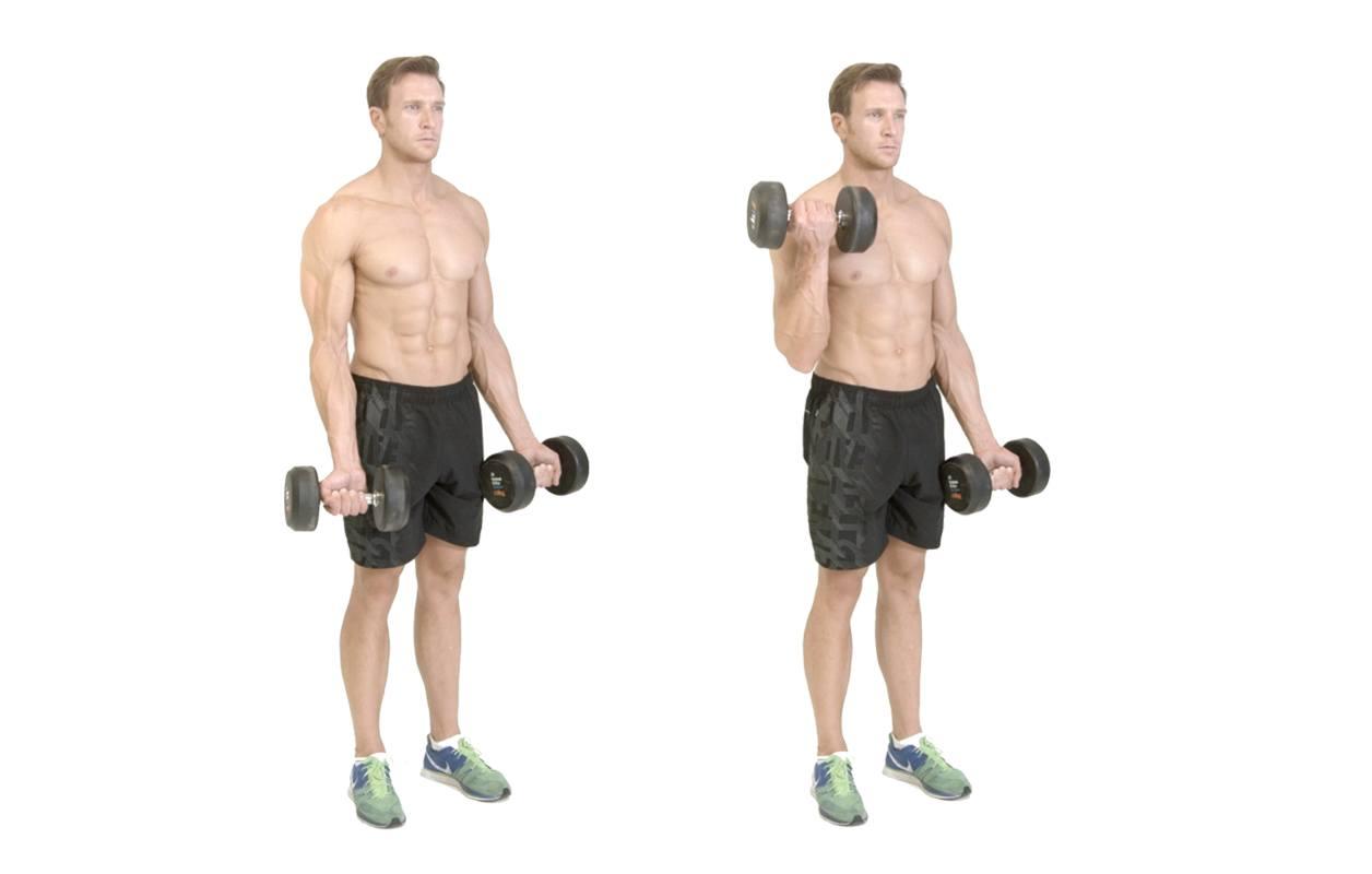 افزایش حجم عضلات در منزل