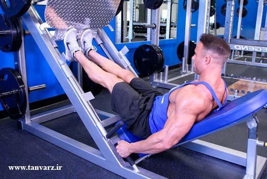 ساق پا دستگاه پرس در برنامه تمرینی عضلات ساق پا