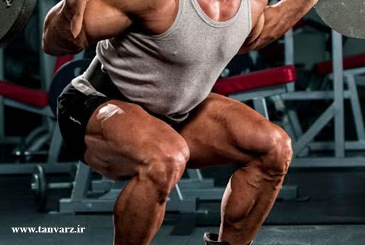 برنامه تخصصی عضلات پا و تفاوت آن با سایر برنامهها