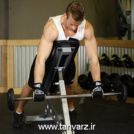 حرکت Incline Bench Pull