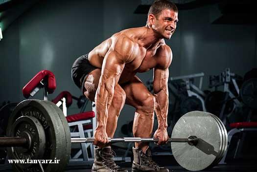 4 حرکت اصلی در وزنهبرداری