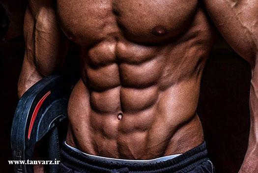 تقویت عضلات مورب شکمی