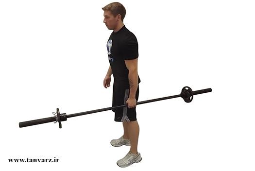 تقویت عضله مورب شکمی