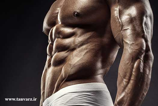 تقویت عضلات مورب شکم