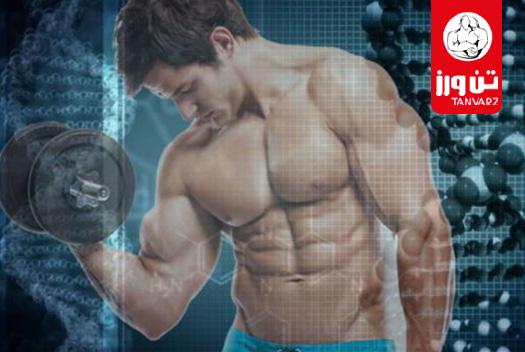 رابطه ژنتیک و رشد عضلات