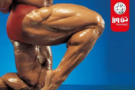 برنامه تمرین افزایش استقامت عضلات پا