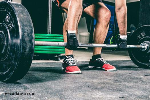 برنامه کات کردن عضلات