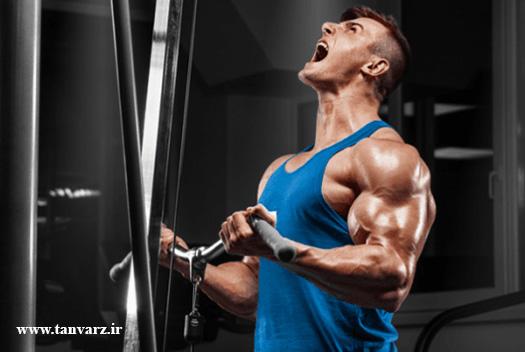 درد عضلات و رشد عضلات