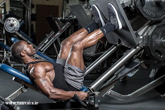 برنامه افزایش حجم عضلات پا