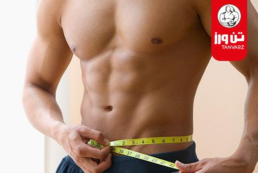 ۲۰ روش موثرعلمی برای لاغری شکم و پهلو