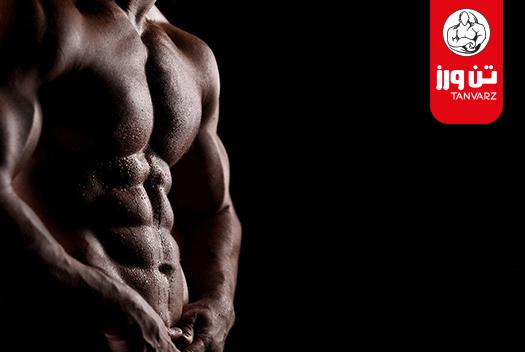 حفظ تفکیک عضلات بعد از دوره کات و راههای عضله سازی بدون چربی