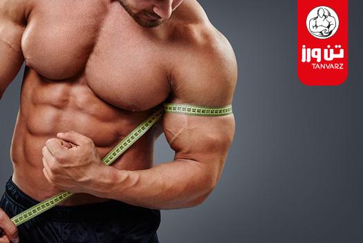 بهترین برنامه بدنسازی حجمی حرفه ای برای افزایش حجم عضلات