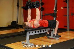 حرکت پرس سینه با دمبل Dumbbell-Bench-Press-