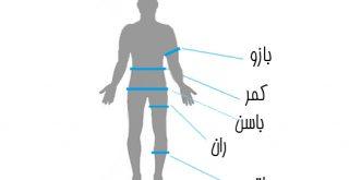 راهنمای اندازه گیری و محاسبه صحیح وزن و قد، دور کمر، شکم، بازو، باسن و غیره