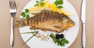 16 منبع و غذای خوشمزه و طبیعی، سرشار از پروتئین